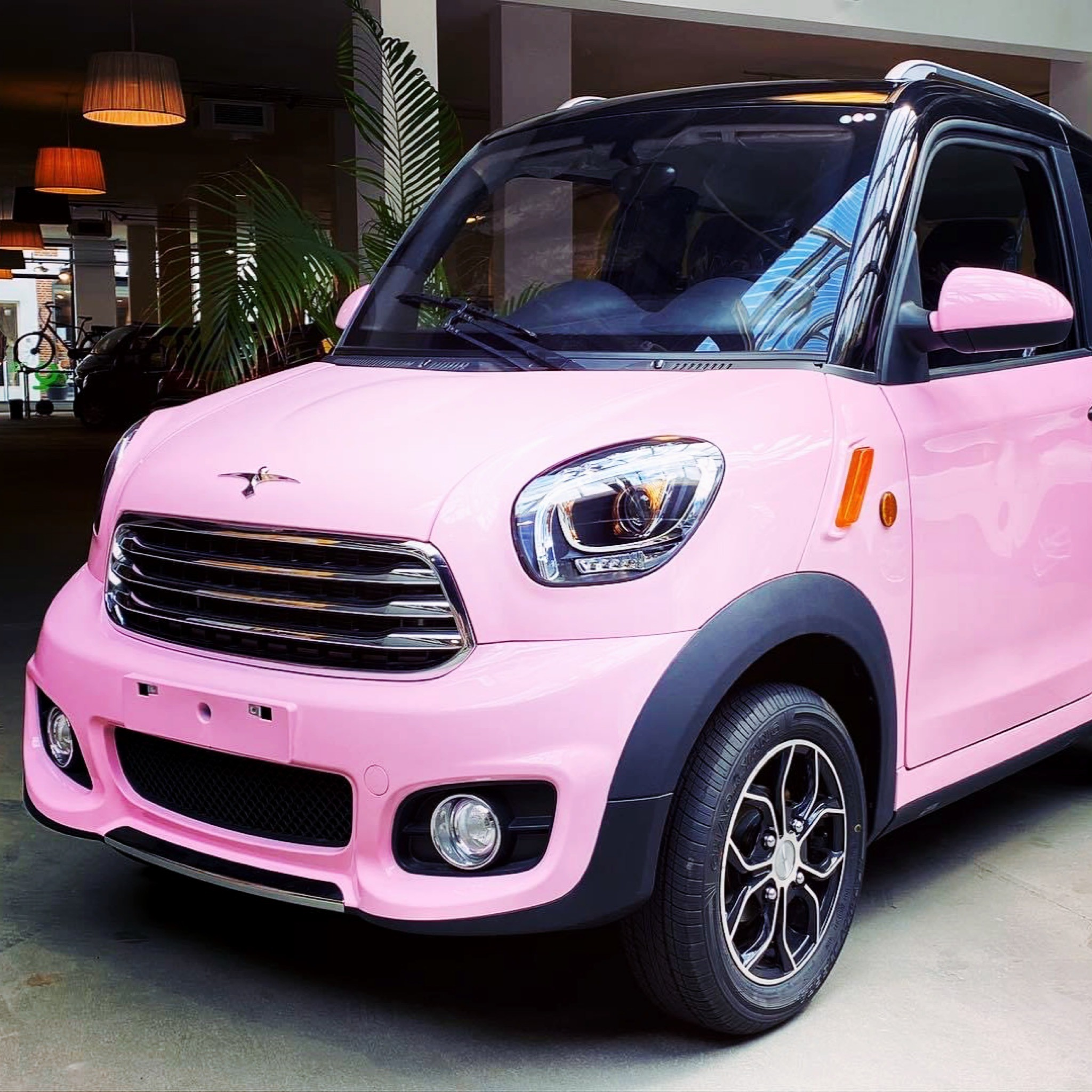 Flinc-EV acties electric vehicles